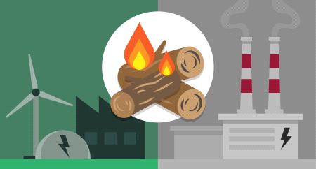 Biomassa: wel of niet als duurzame energiebron?
